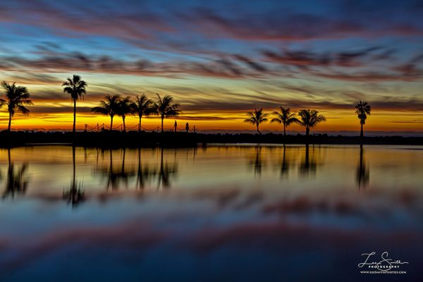 Actual photo Matheson Hammock Sunrise - Taken 2012